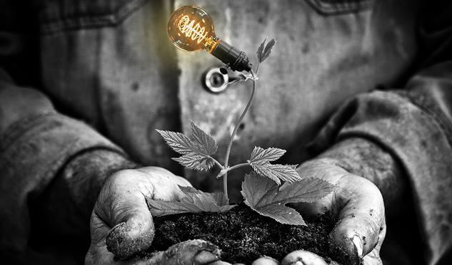 La ciencia de la inspiración: así funciona tu cerebro para que tengas  buenas ideas | Historias