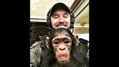 Un piloto de avión y una cría de chimpancé, íntimos amigos después de un rescate
