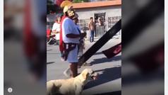 Este perro callejero se ha ganado el cielo con su valentía