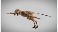 El dinosaurio que volaba con alas de murciélago