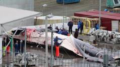Cazadores islandeses matan a una ballena azul en peligro de extinción