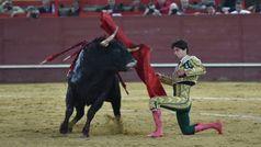 Toros en Valdemorillo (Madrid), 9 de febrero de 2019