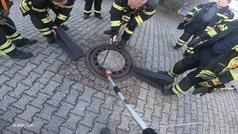 Nueve bomberos para liberar a una rata atrapada en Alemania