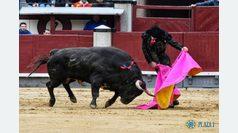 El talento de Juan Ortega cala en Madrid