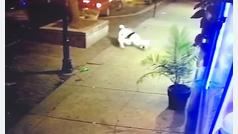 Un hombre hizo de escudo humano para salvar a su novia del tiroteo en Dayton