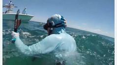 Un tiburón le muerde la cabeza a un pescador