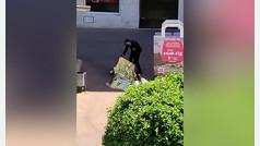 Un hombre mata a puñaladas a su madre en Castellón y después se suicida