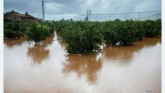 Un total de 15 provincias, en riesgo por lluvia, tormentas, viento y oleaje