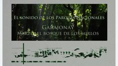 El sonido de los Parques Nacionales: Garajonay