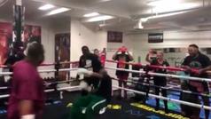Noquean a Mayweather Sr. en un combate de boxeo en el gym