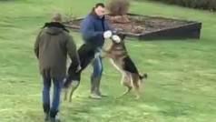 Dos pastores alemanes se abalanzan sobre John Terry para morderle