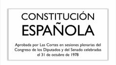 """El director de la RAE no ve acorde la propuesta de """"feminizar la Constitución"""""""