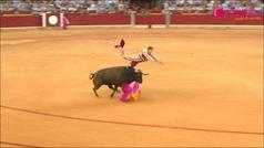 Espantosa cogida de Mariano de la Viña en Zaragoza: ¡en estado gravísimo!