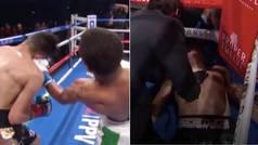 El brutal KO que enloqueció a Mayweather: elegido el mejor del año