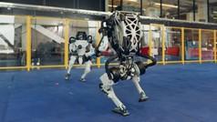 Los robots de Hyundai... bailan el twist