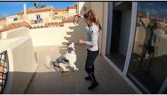 Las trucos de la mascota de Gisela Pulido para pasar el confinamiento