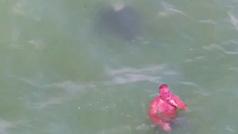 """Graban a un hombre rojo nadando entre rayas áquila: """"¿Es Satanás dándose un baño?"""""""
