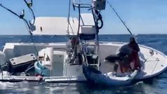 Un barco está a punto de volcar al intentar subir un atún descomunal