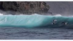 Los 'wipeouts' más animales del surf: graban a un grupo de leones marines surfeando
