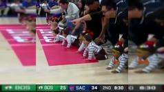 La viral carrera de bebés que eclipsó por completo el Kings - Celtics