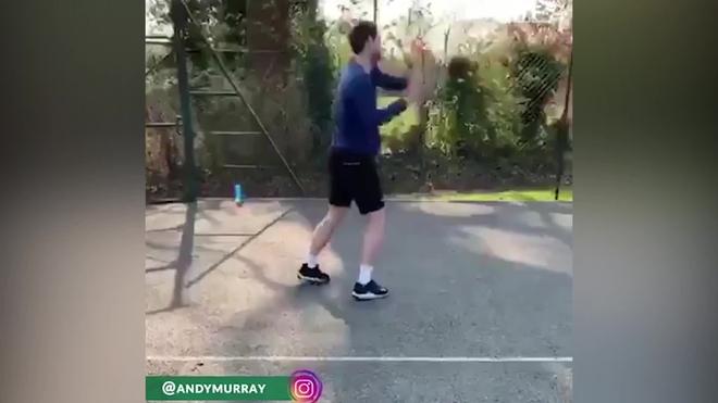 Andy Murray inicia su regreso a las canchas