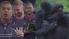 Mbappé, Neymar, Ramos, Di María y Marquinhos nombran a tres bebe gorilas de Ruanda
