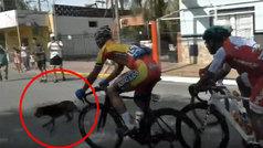Un perro se cruza en la Vuelta a San Juan y provoca una caída múltiple