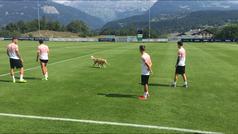 Un simpático espontáneo se cuela en el entrenamiento del Valencia