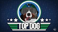 Organizan carreras de perros sobre hielo en un partido de la NHL