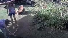 Una pitón estrangula a un cachorro de perro y la dueña se enfrenta a la serpiente