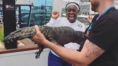 El miedo de Sloane Stephens: tensión animal en el Open de Australia