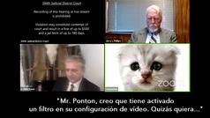 """La pifia en una reunión de 'Zoom' más divertida de la pandemia: """"Estoy aquí, no soy un gato"""""""