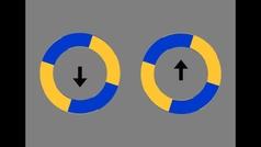 La ilusión óptica que revoluciona las redes