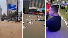 Terroríficas inundaciones en Zhengzhou: calles como ríos y el metro con el agua al cuello