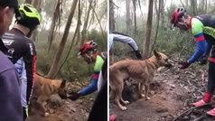 La marcha ciclista que salvó la vida de un perro