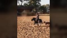El jinete brasileño de doma clásica Leandro Aparecido, suspendido por maltratar al poni de su hija