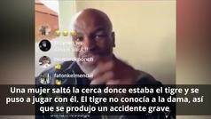 """Mike Tyson explica como su tigre """"le arrancó el brazo"""" a una mujer y lo que pagó"""