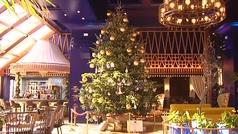 Instalan el árbol más caro del mundo en la localidad malagueña de Estepona