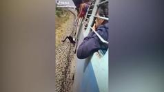 El escalofriante momento en el que un hombre cae de un tren en marcha