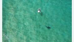 Evita el ataque de un tiburón a un surfista con el sistema de voz de su dron