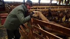 El mayor rebaño caprino ecológico de Europa está en Burgos