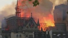 Francia tala robles centenarios para reconstruir la cubierta y la aguja de Nôtre Dame
