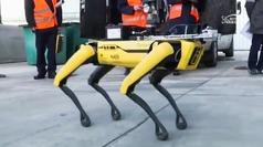 """Así es el perro robot que """"olfatea"""" la radiación en la central nuclear de Chernóbil"""
