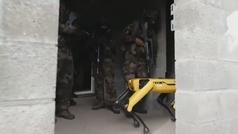 El ejército francés prueba el robot de Boston Dynamics