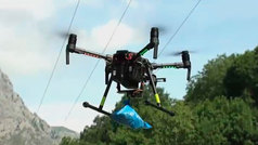 Los drones llegan al mundo del pastoreo
