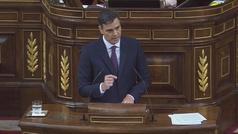 Pedro Sánchez propone prohibir por ley las amnistías fiscales