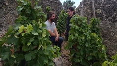 Un vino con 100 puntos Parker en Ávila