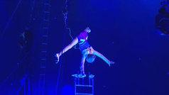 El circo cumple 250 años de vida
