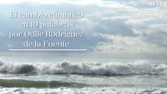 El cambio climático en 10 palabras, por Odile Rodríguez de la Fuente