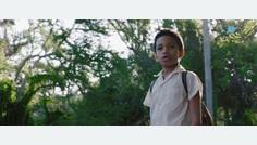 Yuli la nueva película de Icíar Bollaín